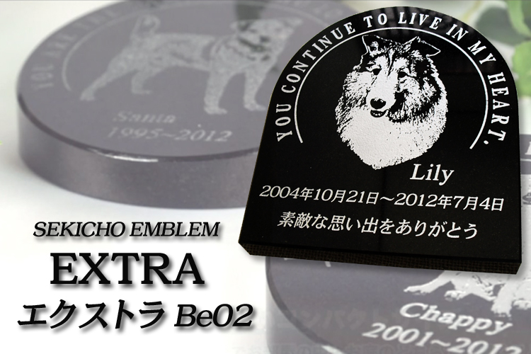 EXTRA BE02