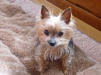Meimiの写真3