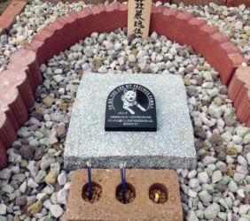 パンチのお墓