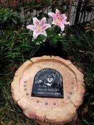 マーブルのお墓